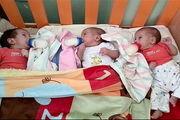 بررسی مشکلات خانواده ها با تولد نوزاد چند قلو