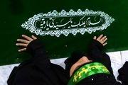 تصاویری ناب از سفره حضرت رقیه(س)در بین الحرمین