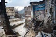 کمک های عراق به سیل زدگان /حب الحسین یجمعنا/ انتقاد نژاد پرستانه یک سلبریتی