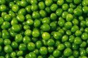 گوجه سبز برای چه گروه سنی ضرر دارد؟