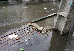 اقدامات انجام شده در راستای پاکسازی مسیل ها و انهار شهر تهران