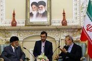 لاریجانی: رفتار برخی کشورها مخل امنیت منطقه است
