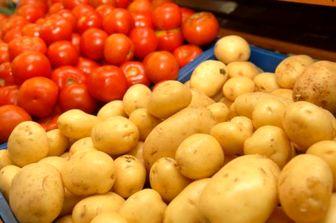 کاهش ۸۰درصدی قیمت سیب زمینی