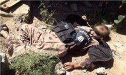 کشته شدن و بازداشت ۲۱ داعشی در استان نینوی