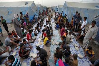فرار خانواده های عراقی از جهنم داعش در کرکوک عراق