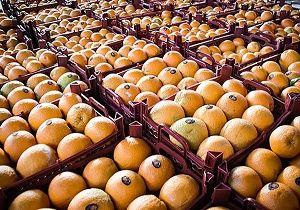 آرامش بر بازار پرتقال حاکم است