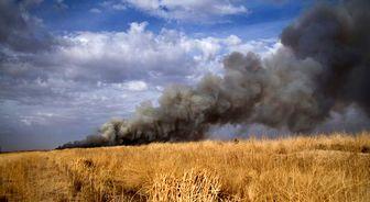 مهار آتش سوزی میقان اراک/ دلیل اصلی آتش تالاب مشخص شد