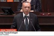 اردوغان: تنش در خلیج فارس، ترکیه را نیز تهدید میکند