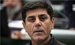 شورای نگهبان عدم استعفا به موقع محمدرضا نجفی را بررسی کند