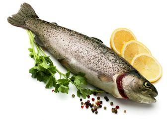 هرگز این مواد را همراه ماهی نخورید