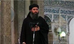 سرکرده «داعش» زنده است!