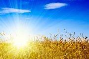 کدام مشکلات سلامت در فصل تابستان تشدید میشوند؟
