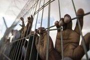 اعتصاب سراسری زندانیان در ۱۷ ایالت آمریکا