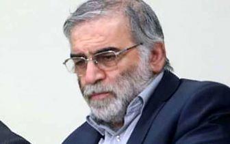 کدام کشورها تاکنون ترور شهید فخریزاده را محکوم کردهاند؟