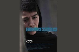امید به حضور یک فیلم در جشنواره فجر