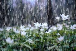 احتمال بارش تگرگ در ۹ استان کشور