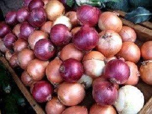 آخرین قیمت پیاز و سیب زمینی در میادین میوه و تره بار