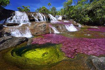 """تصویری شگفت انگیز از رودخانه جالب """"پنج رنگ"""""""