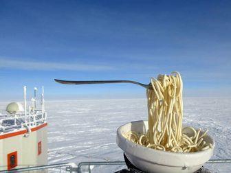 یخ زدن غذای داغ در قطب جنوب/ عکس