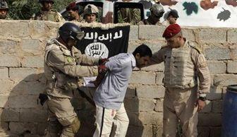هلاکت ۱۲ عنصر داعش در فلوجه