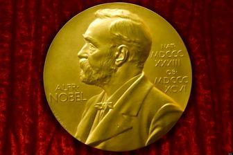 تبریک مقامات عراقی به دختر فعال ایزدی برنده جایزه صلح نوبل