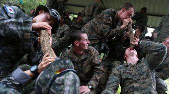 رزمایش نظامی عجیب در جنگل/ عکس