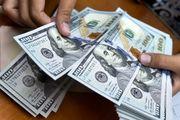 چرا قیمت دلار پایین آمد اما قیمت کالاها نه؟
