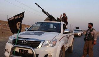 داعش تپه مشرف به کوبانی را تصرف کرد