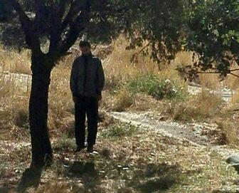 خودکشی در باغات قزوین + تصویر