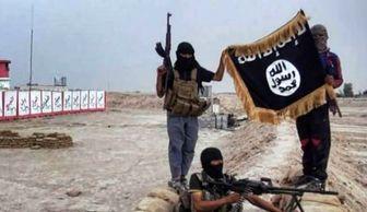 اعدام ۱۰۰ داعشی به دلیل تردید در وفاداری!