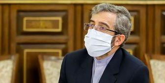 گزارش گزارشگر ویژه وضعیت حقوق بشر ایران بیانگر وضعیت حقوق بشر در ایران نیست