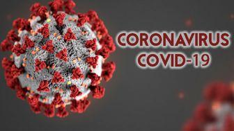 آخرین آمار کرونا در 20 خرداد99 / شناسایی 2095 مبتلای جدید به ویروس کرونا