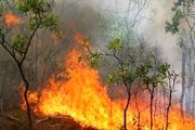 وقوع آتش سوزی در منطقه سبو بزرگ لواسانات