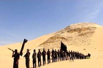 داعش مسئول حمله به فرودگاه «العریش» مصر