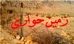 انتقال درختان ۶ ساله از تهران به جاجرود