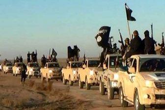 افشا جزئیات جدید شناسایی یک تیم تروریستی در روسیه