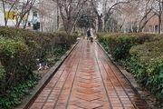 بارش باران در تهران/ گزارش تصویری