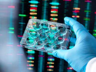 """بودجه ای که """"بیل گیتس"""" برای فناوری جدید تشخیص کووید- 19 مقرر کرد!"""