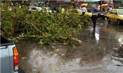 جزئیاتی از حوادث توفان امروز تهران