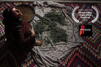 «فروزان» ایرانی مهمان جشنواره هندی
