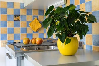 حفظ بهداشت آشپزخانه در ایام کرونایی