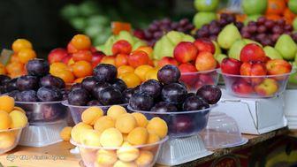 قیمت میوه هم وارد کانال دلالان شد!