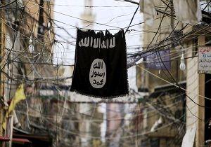 ۲۰ عضو داعش در ترکیه دستگیر شدند
