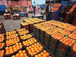 توزیع میوه شب عید از ۲۰ اسفند