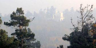 رابطه عجیب آلودگی هوا بر تشدیدی پرخاشگری
