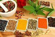چگونه به غذاها ادویه اضافه کنیم؟