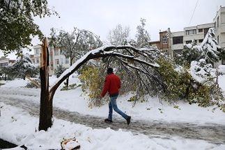 خسارت بیش از 27 میلیارد ریالی بارش برف در اردبیل