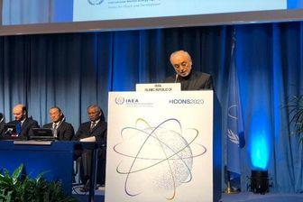 صالحی: ایران در صیانت از امنیت خود تردیدنمیکند