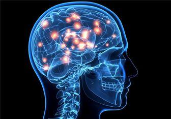 مفید بودن نیکوتین برای مغز،درست یا غلط؟