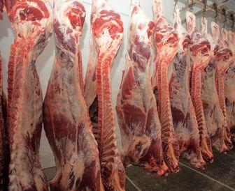 قیمت گوشت ترمز کشید!